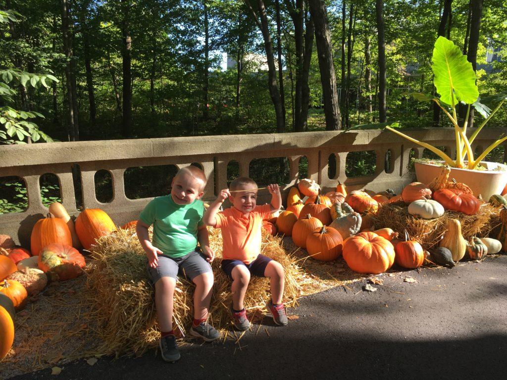 Newfields Harvest - Circle City Adventure Kids