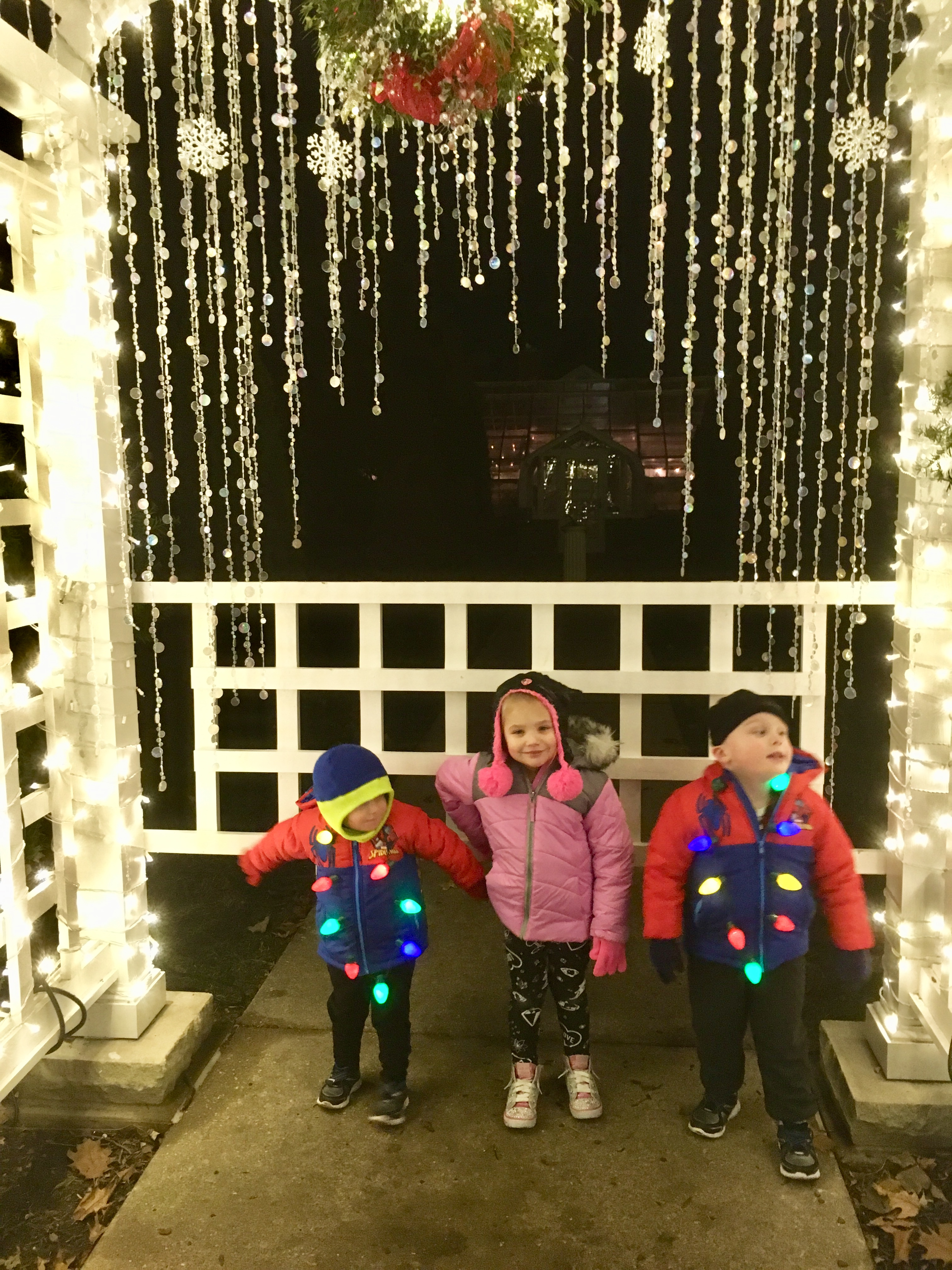 Newfields Winterlights - Circle City Adventure Kids
