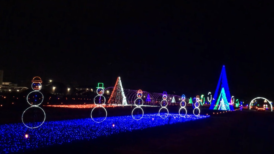 21 Best Christmas Light Displays for Central Indiana Families